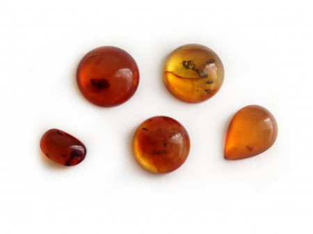 Set of 5 Red Amber Cabochons